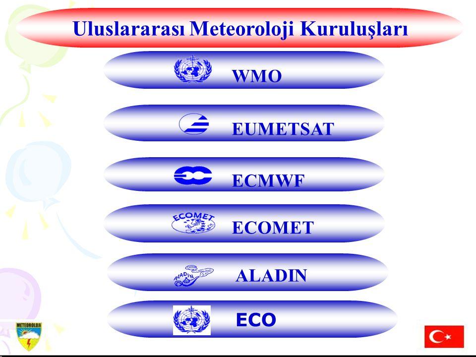 Uluslararası Meteoroloji Kuruluşları