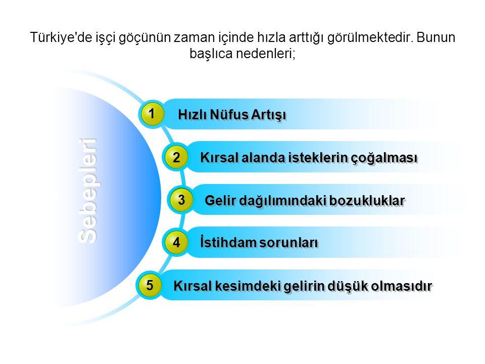 Türkiye de işçi göçünün zaman içinde hızla arttığı görülmektedir
