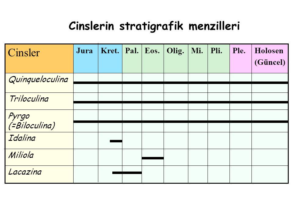 Cinslerin stratigrafik menzilleri