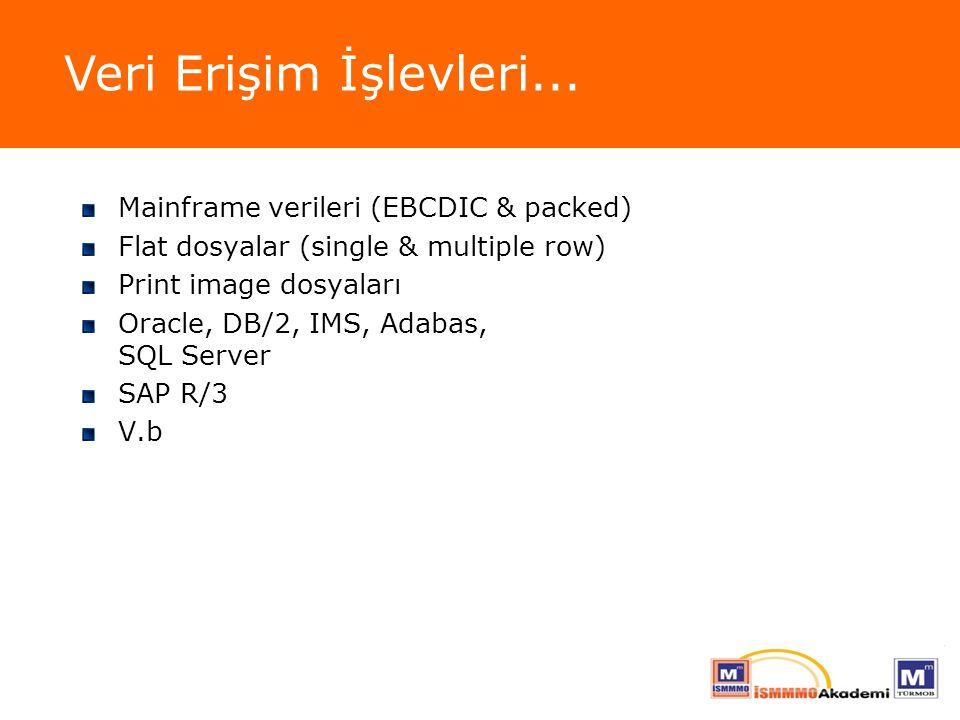 Veri Erişim İşlevleri... Mainframe verileri (EBCDIC & packed)