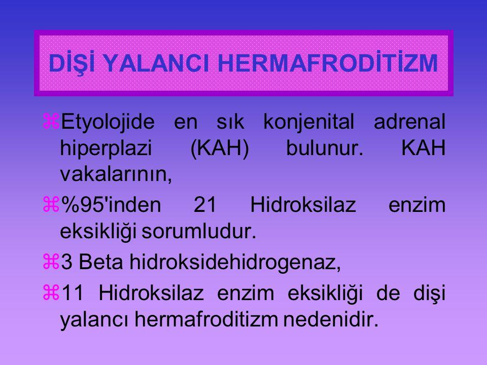 DİŞİ YALANCI HERMAFRODİTİZM