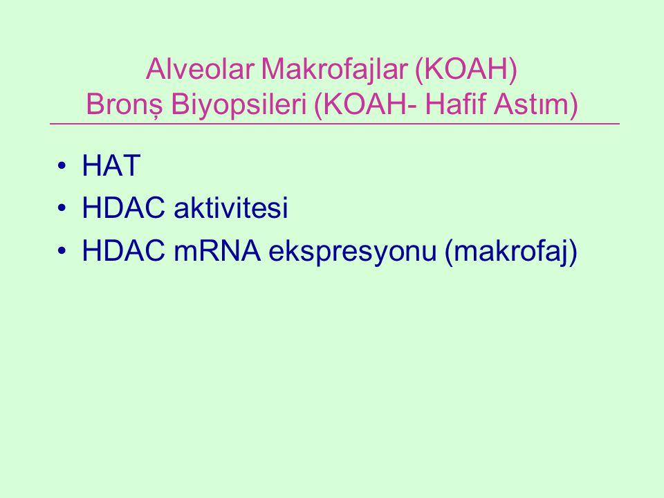 Alveolar Makrofajlar (KOAH) Bronş Biyopsileri (KOAH- Hafif Astım)