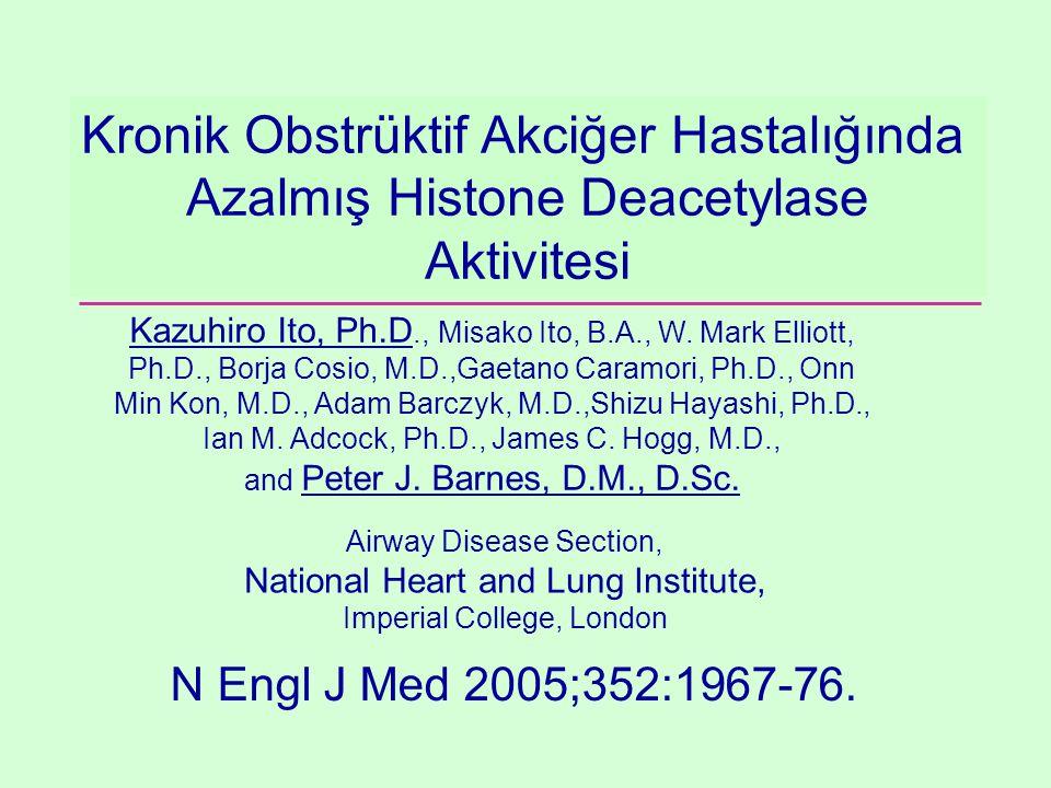 Kronik Obstrüktif Akciğer Hastalığında