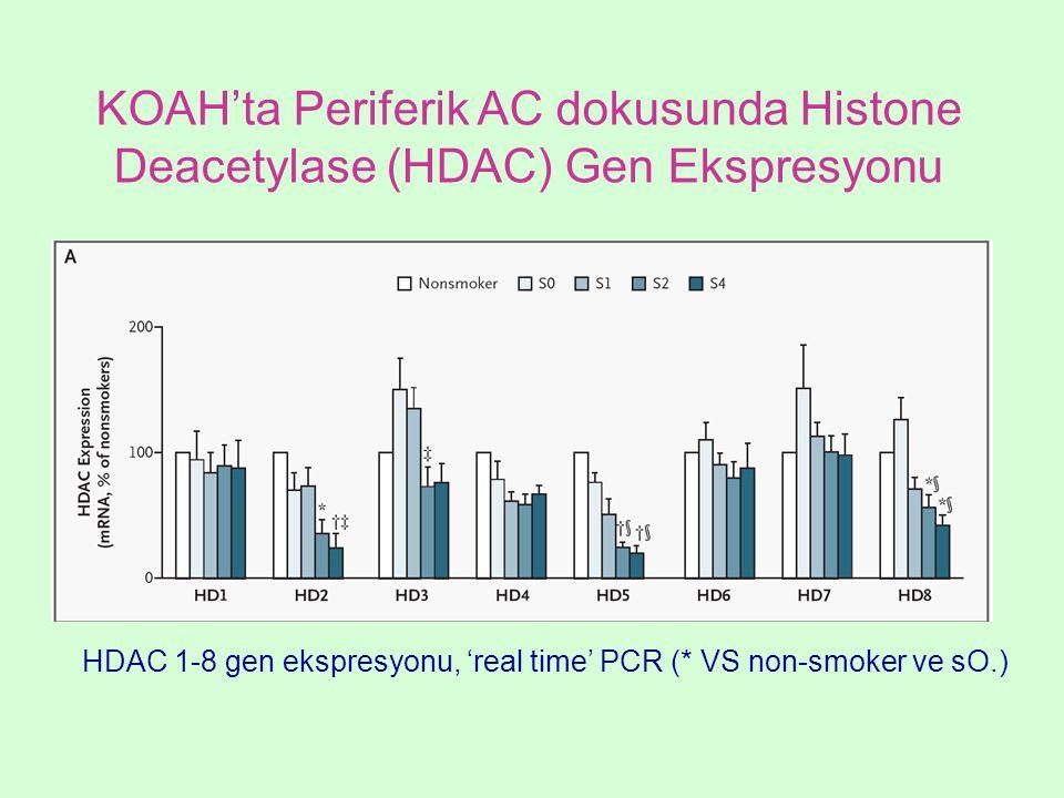 KOAH'ta Periferik AC dokusunda Histone