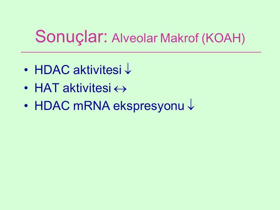 Sonuçlar: Alveolar Makrof (KOAH)