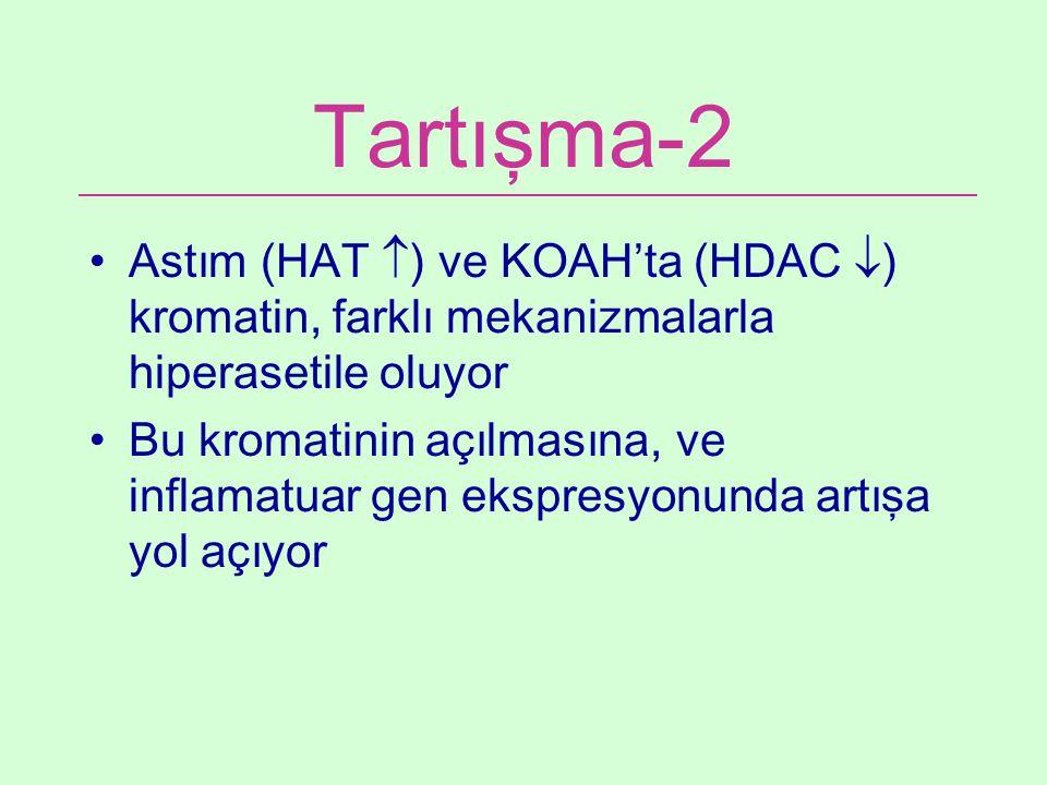 Tartışma-2 Astım (HAT ) ve KOAH'ta (HDAC ) kromatin, farklı mekanizmalarla hiperasetile oluyor.