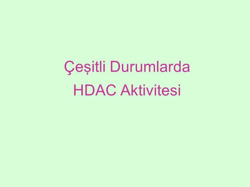 Çeşitli Durumlarda HDAC Aktivitesi