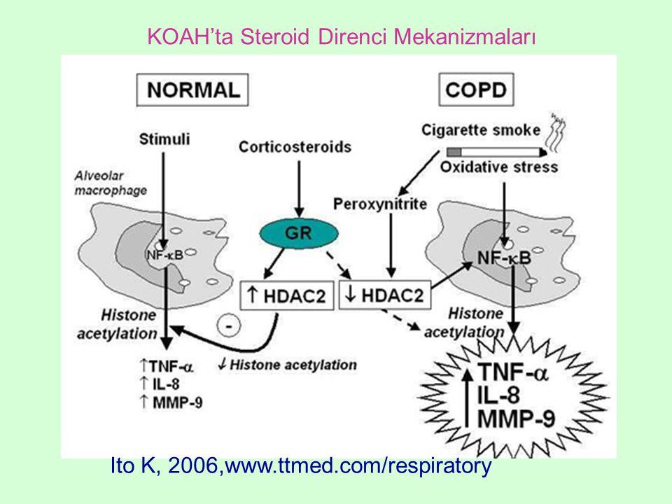 KOAH'ta Steroid Direnci Mekanizmaları