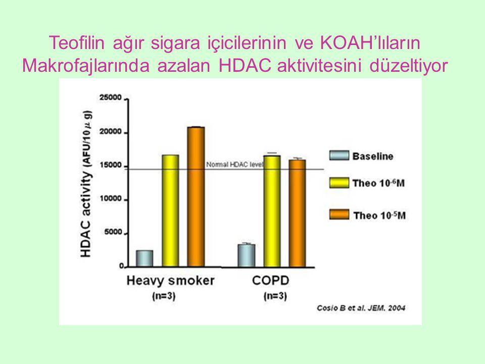 Teofilin ağır sigara içicilerinin ve KOAH'lıların