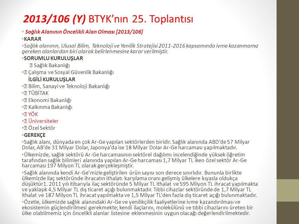 2013/106 (Y) BTYK'nın 25. Toplantısı
