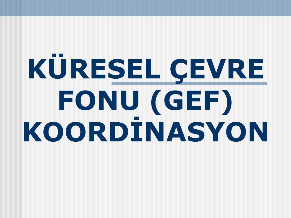 KÜRESEL ÇEVRE FONU (GEF) KOORDİNASYON