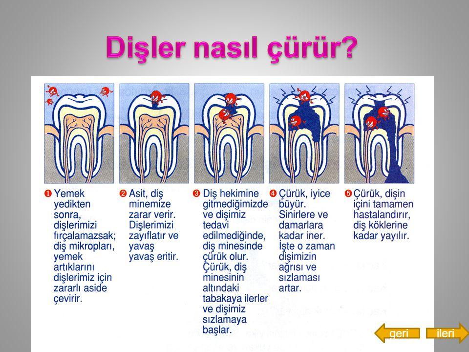 Dişler nasıl çürür geri ileri