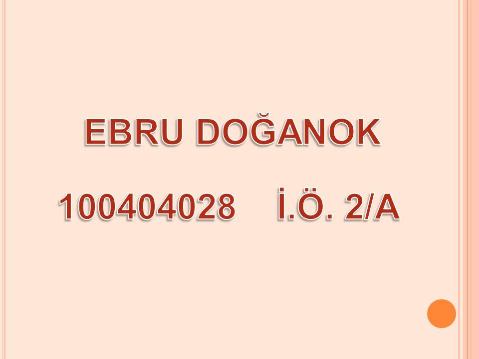 EBRU DOĞANOK 100404028 İ.Ö. 2/A