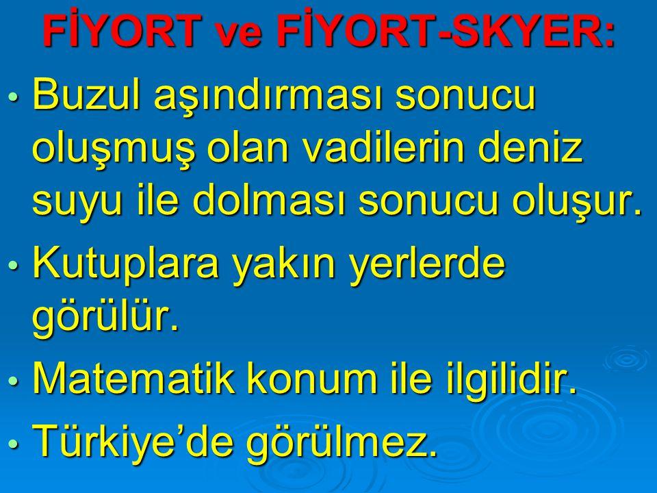 FİYORT ve FİYORT-SKYER: