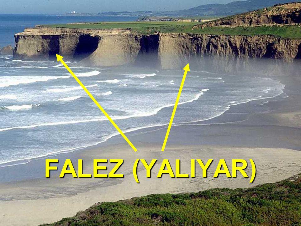 FALEZ (YALIYAR)