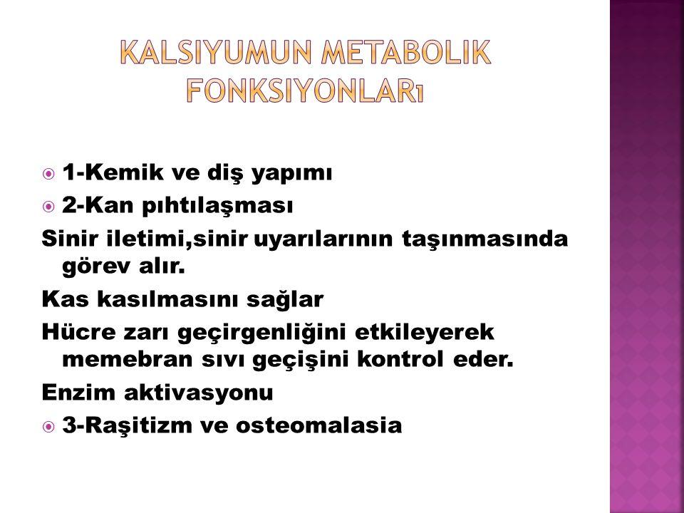 Kalsiyumun metabolik fonksiyonları
