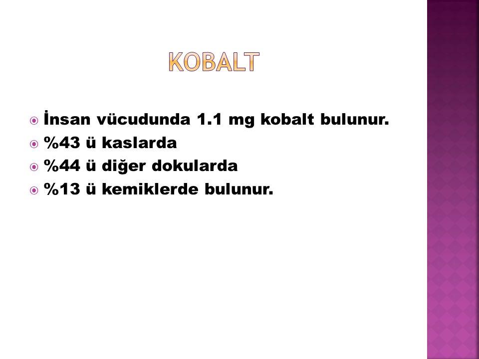 kobalt İnsan vücudunda 1.1 mg kobalt bulunur. %43 ü kaslarda