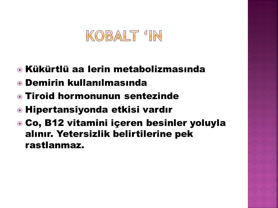 Kobalt 'IN Kükürtlü aa lerin metabolizmasında Demirin kullanılmasında