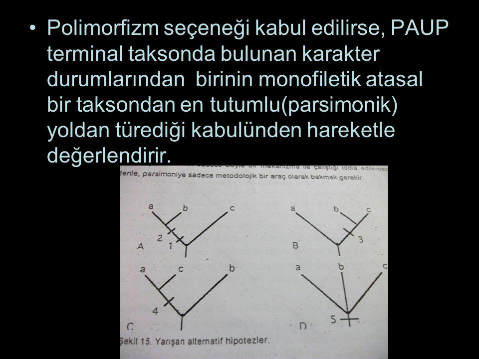 Polimorfizm seçeneği kabul edilirse, PAUP terminal taksonda bulunan karakter durumlarından birinin monofiletik atasal bir taksondan en tutumlu(parsimonik) yoldan türediği kabulünden hareketle değerlendirir.