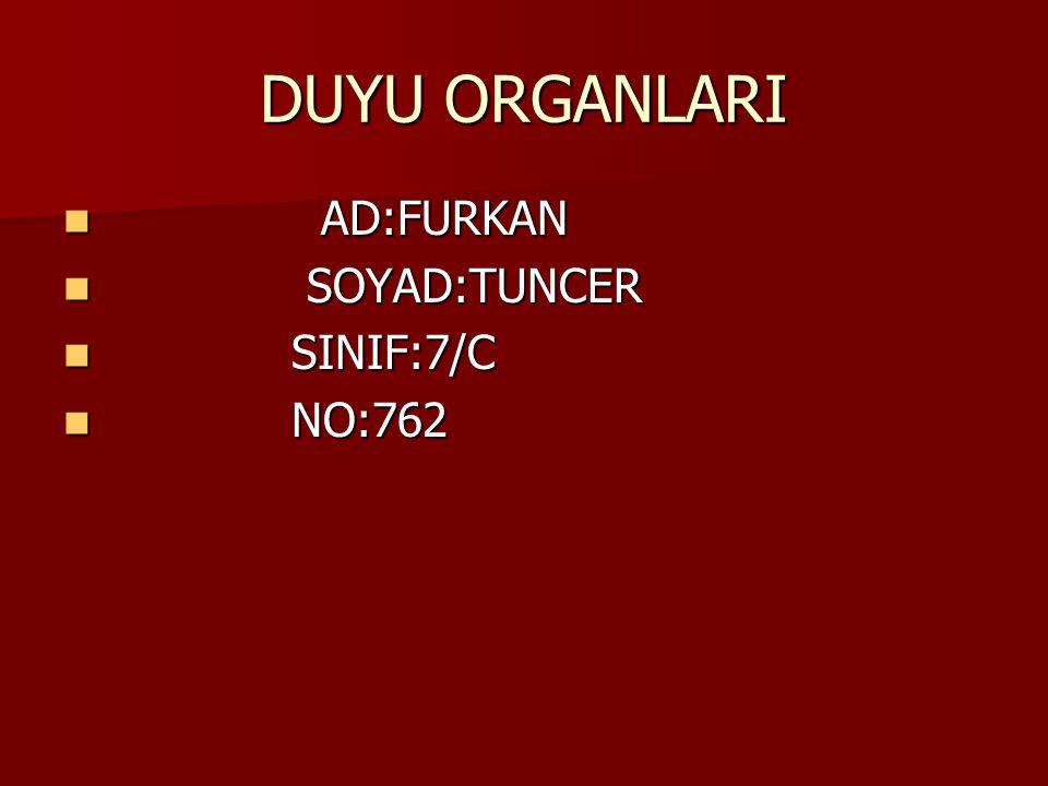 DUYU ORGANLARI AD:FURKAN SOYAD:TUNCER SINIF:7/C NO:762