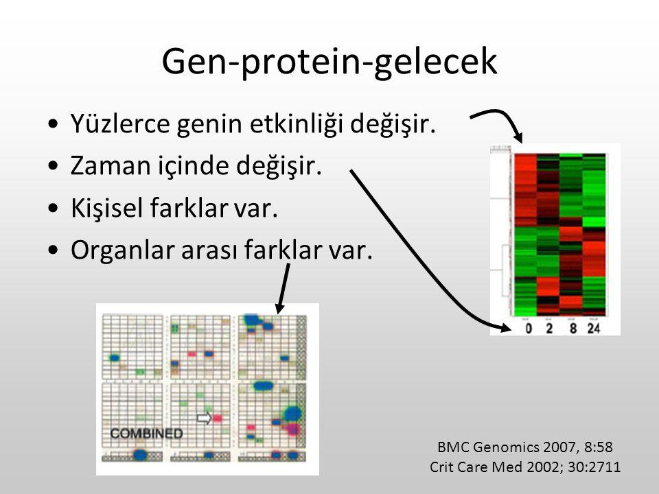 Gen-protein-gelecek Yüzlerce genin etkinliği değişir.