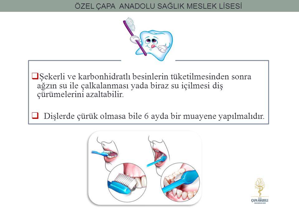 Dişlerde çürük olmasa bile 6 ayda bir muayene yapılmalıdır.