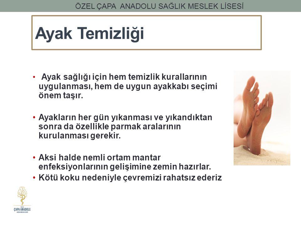 ÖZEL ÇAPA ANADOLU SAĞLIK MESLEK LİSESİ