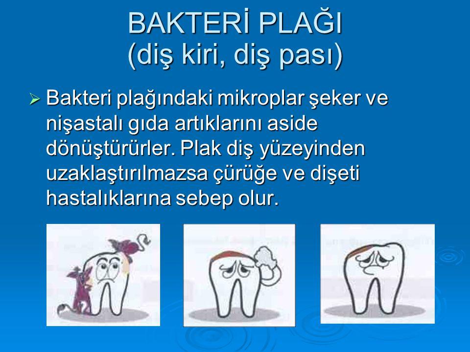 BAKTERİ PLAĞI (diş kiri, diş pası)