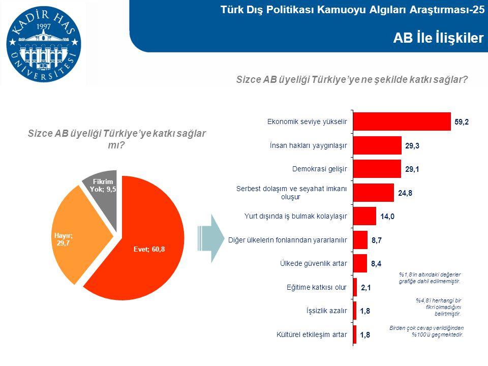 AB İle İlişkiler Türk Dış Politikası Kamuoyu Algıları Araştırması-25