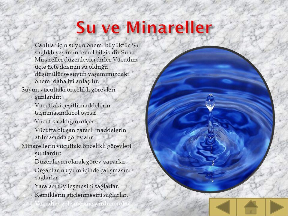 Su ve Minareller