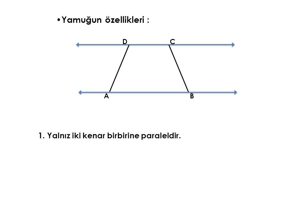 Yamuğun özellikleri : 1. Yalnız iki kenar birbirine paraleldir. D C A