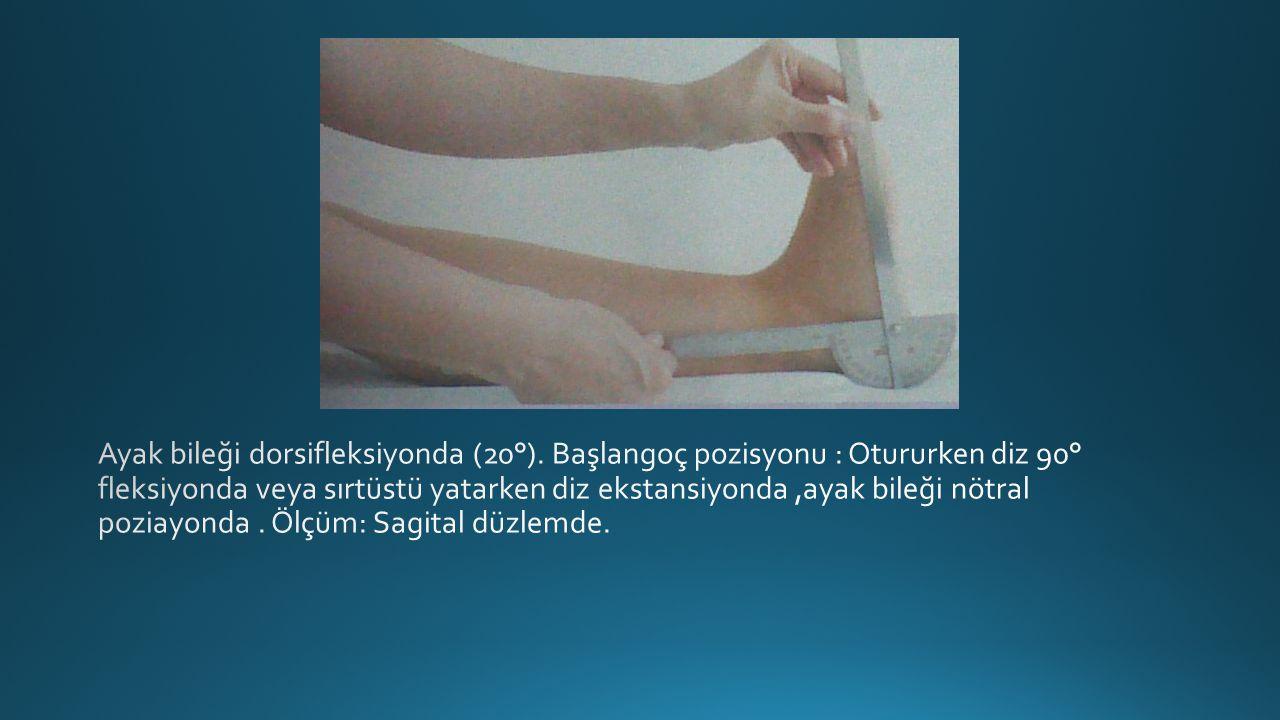 Ayak bileği dorsifleksiyonda (20°)