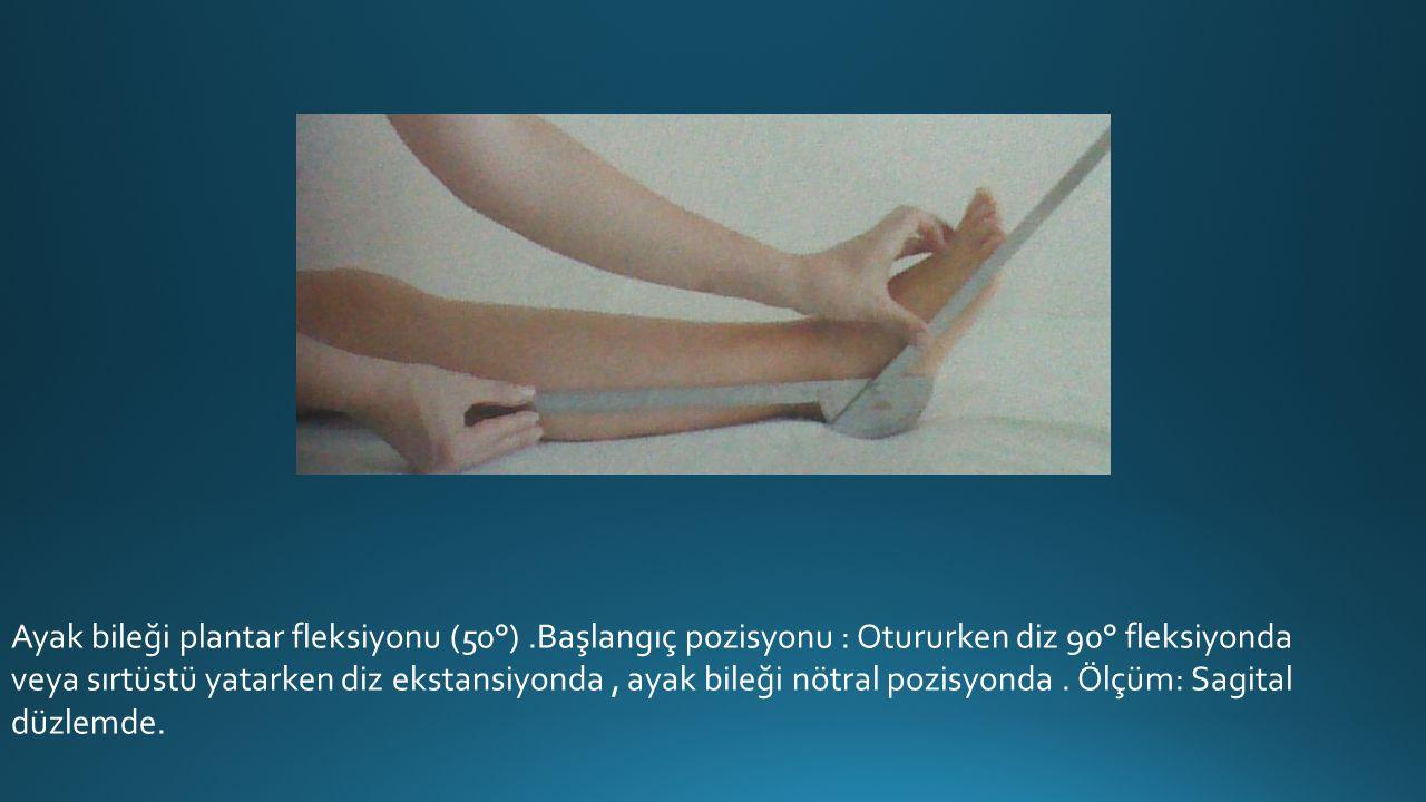 Ayak bileği plantar fleksiyonu (50°)
