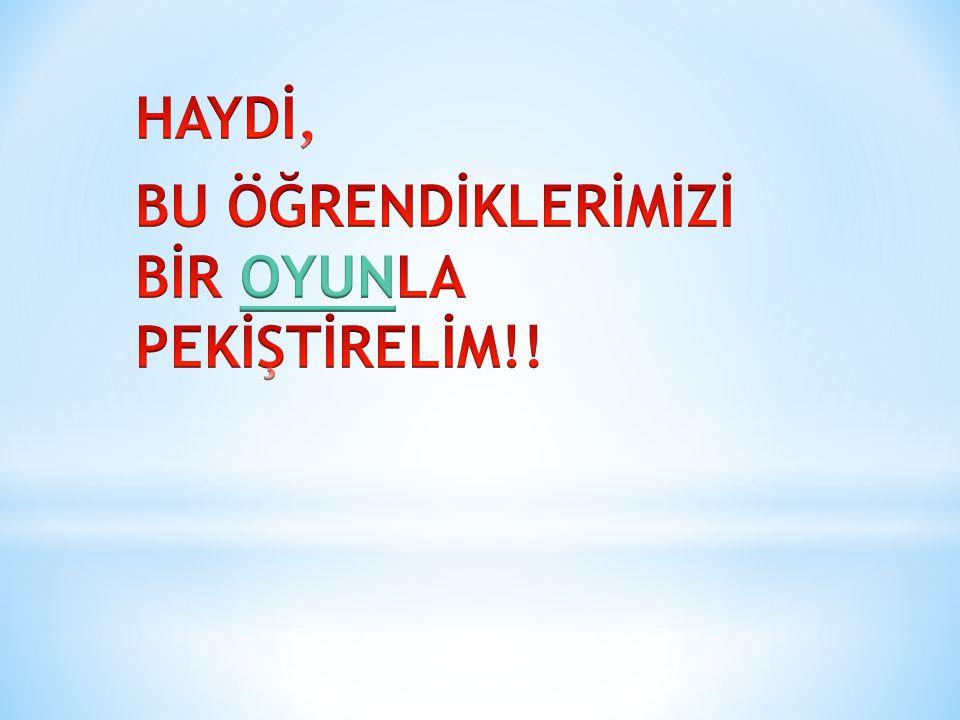 HAYDİ, BU ÖĞRENDİKLERİMİZİ BİR OYUNLA PEKİŞTİRELİM!!