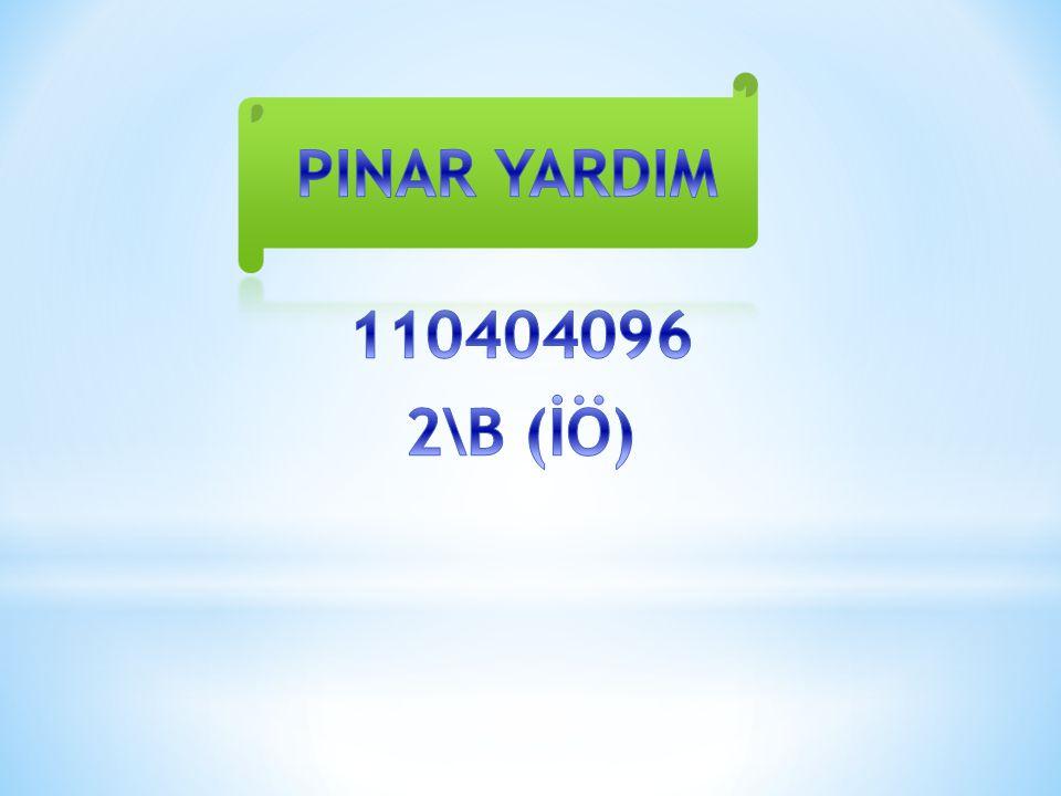 PINAR YARDIM 110404096 2\B (İÖ)