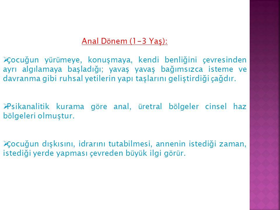 Anal Dönem (1-3 Yaş):