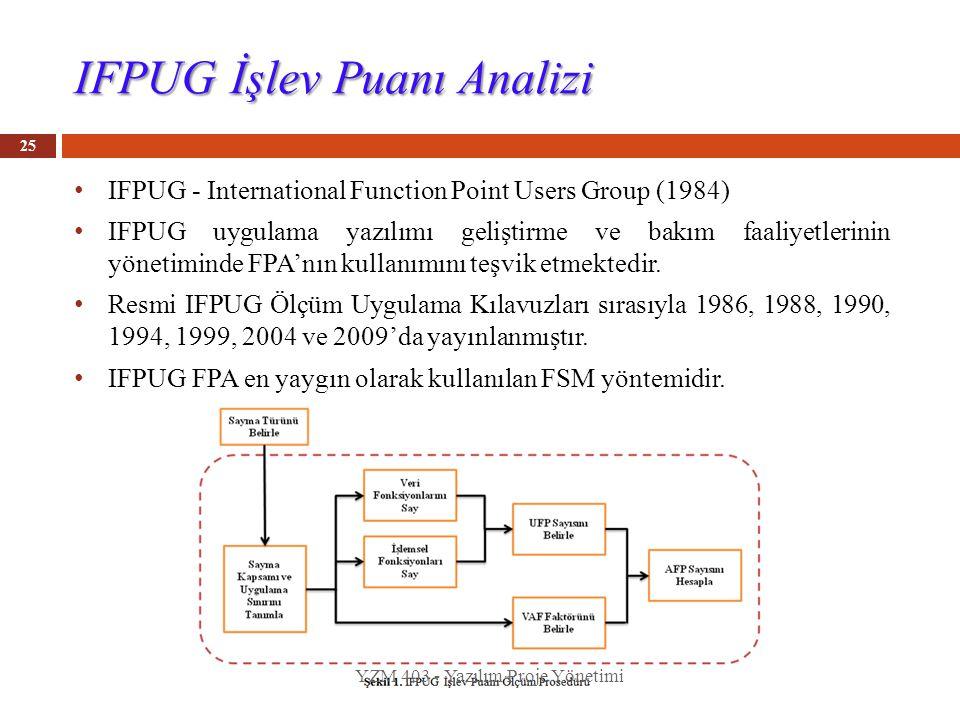 IFPUG İşlev Puanı Analizi