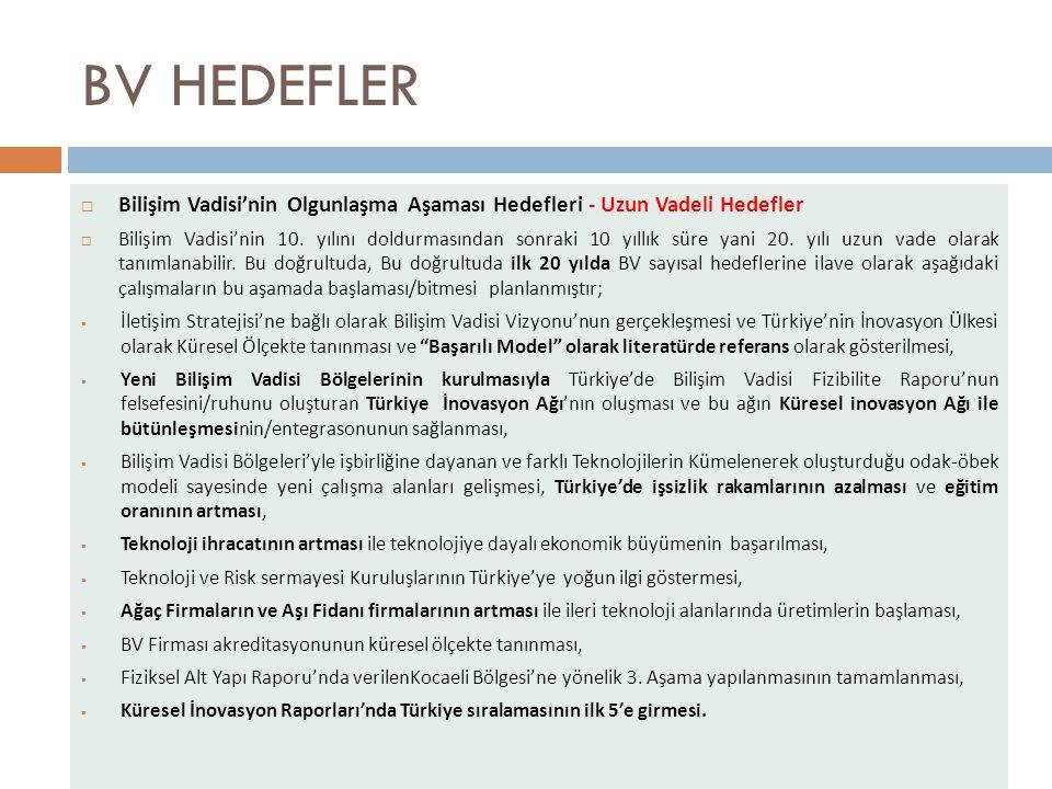 BV HEDEFLER Bilişim Vadisi'nin Olgunlaşma Aşaması Hedefleri - Uzun Vadeli Hedefler.
