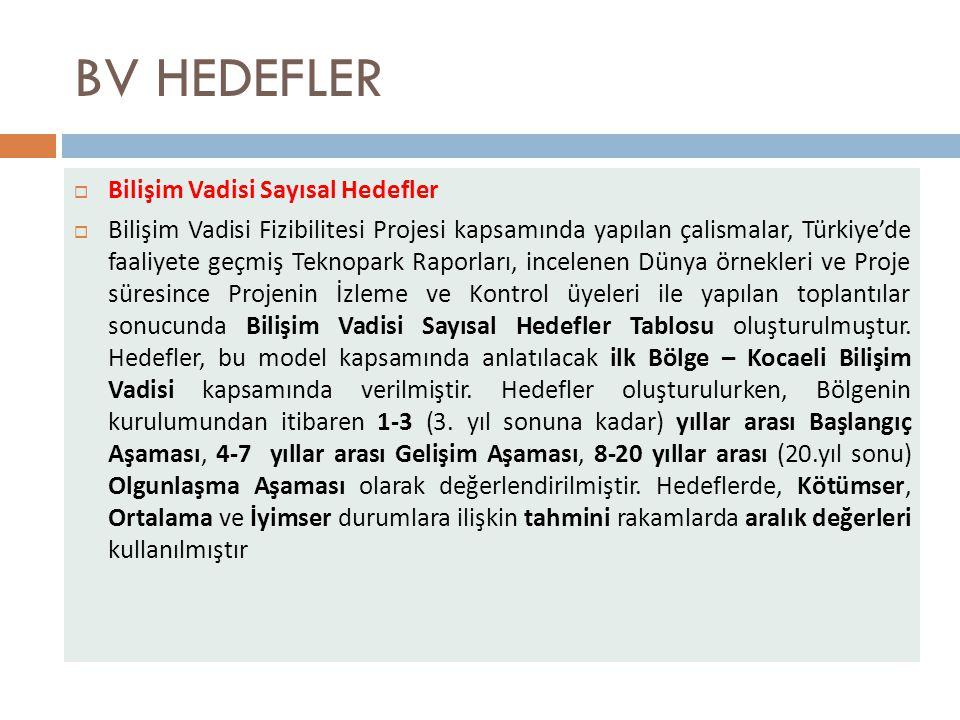 BV HEDEFLER Bilişim Vadisi Sayısal Hedefler