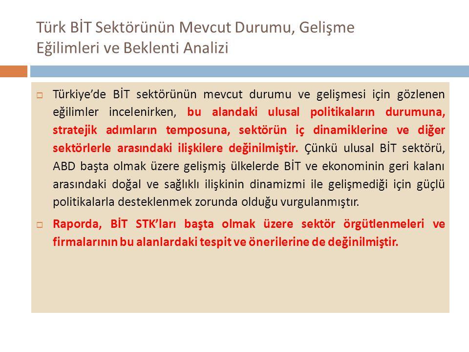 Türk BİT Sektörünün Mevcut Durumu, Gelişme