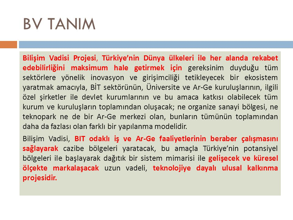 BV TANIM