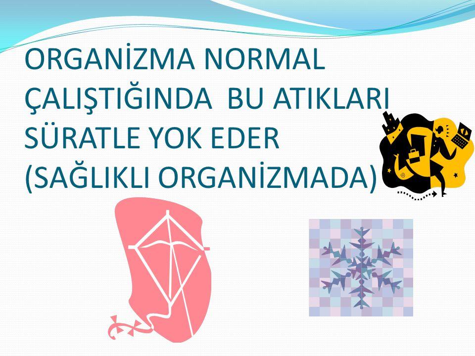 ORGANİZMA NORMAL ÇALIŞTIĞINDA BU ATIKLARI SÜRATLE YOK EDER (SAĞLIKLI ORGANİZMADA)