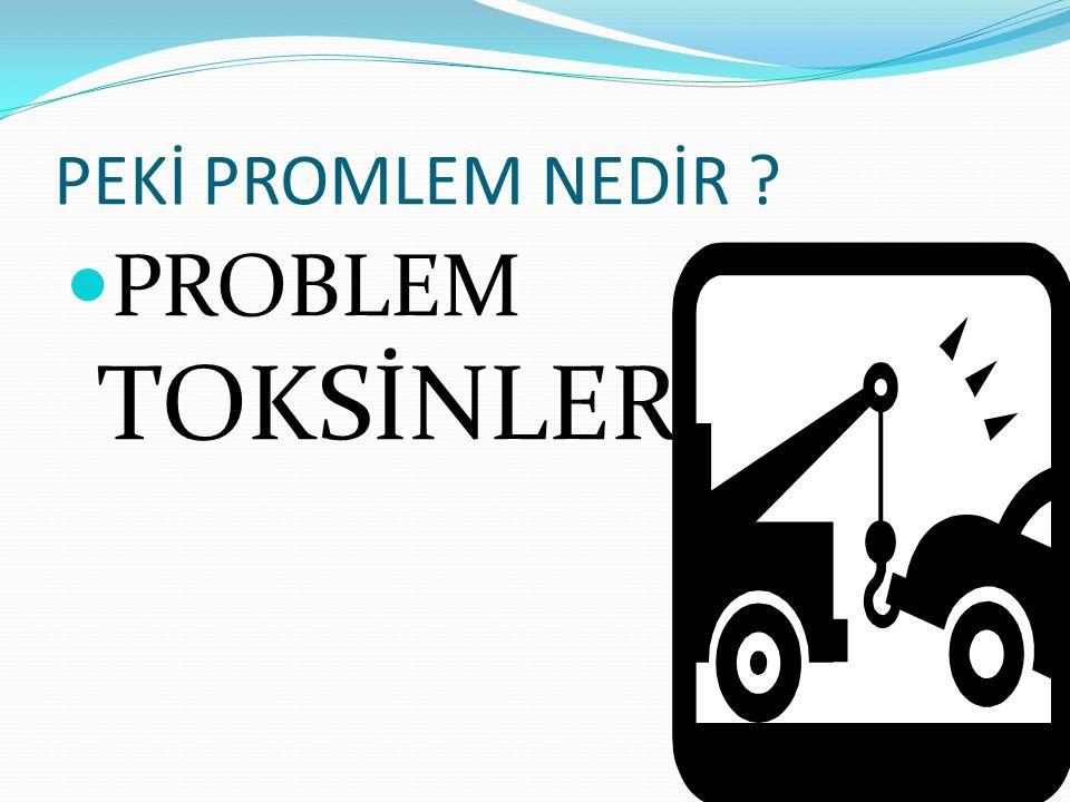 PEKİ PROMLEM NEDİR PROBLEM TOKSİNLER