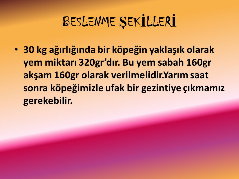 BESLENME ŞEKİLLERİ