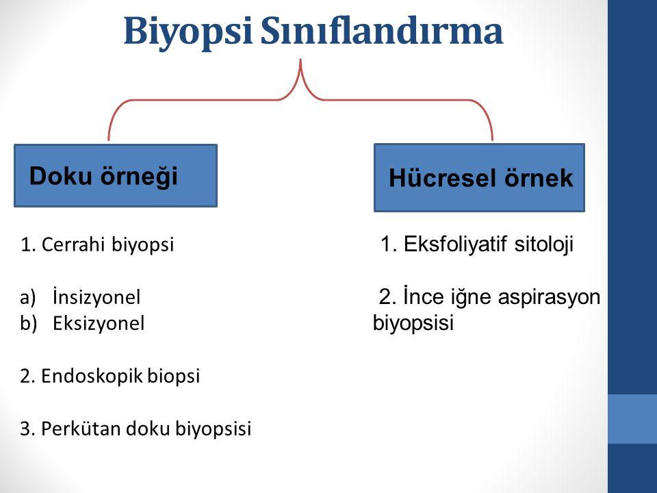 Biyopsi Sınıflandırma