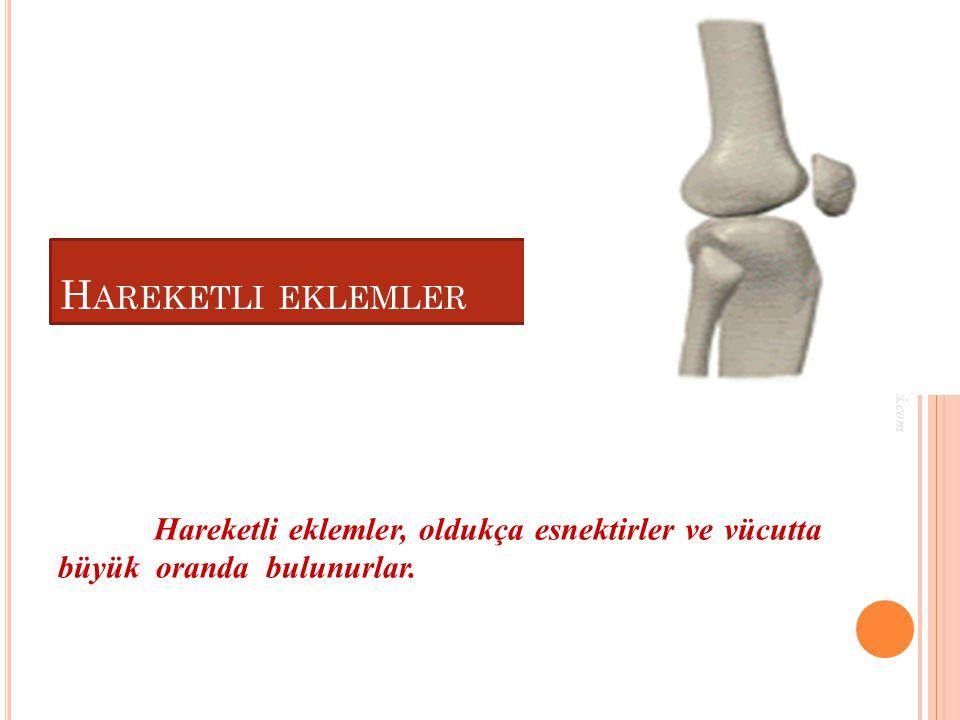Hareketli eklemler www.egitimcininadresi.com.