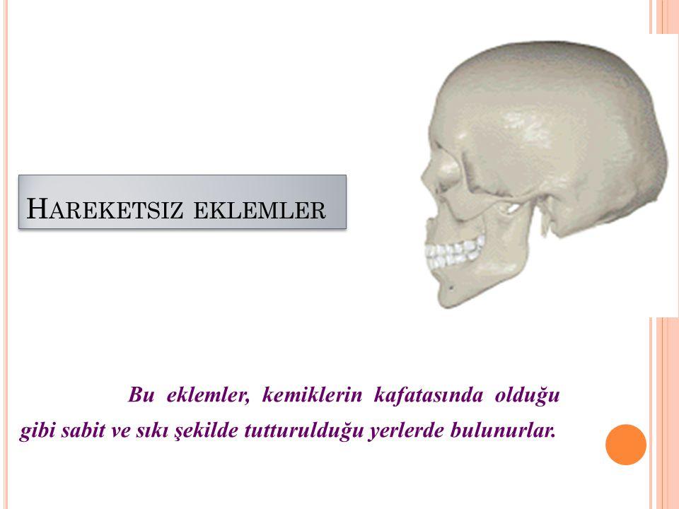 Hareketsiz eklemler www.egitimcininadresi.com.