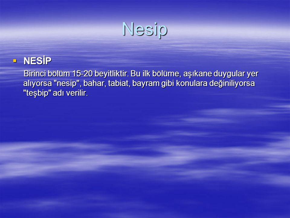 Nesip NESİP.