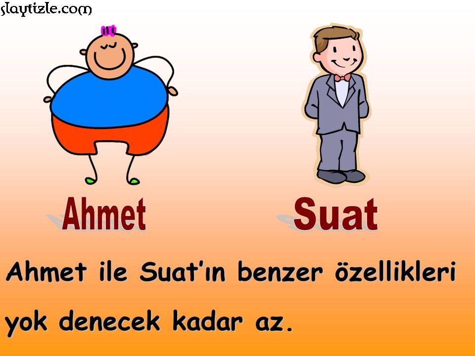 Ahmet ile Suat'ın benzer özellikleri yok denecek kadar az.