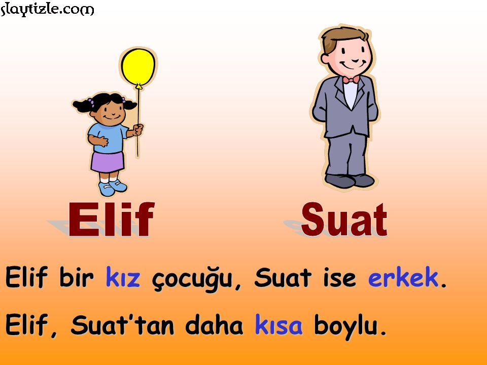 Elif bir kız çocuğu, Suat ise erkek. Elif, Suat'tan daha kısa boylu.